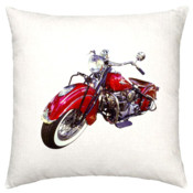 Motorcycle cushion