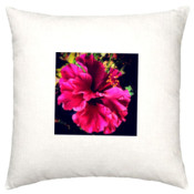 Flower Garden Photograph Cushion