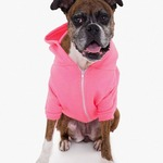 American Apparel Dog Flex Fleece Hood
